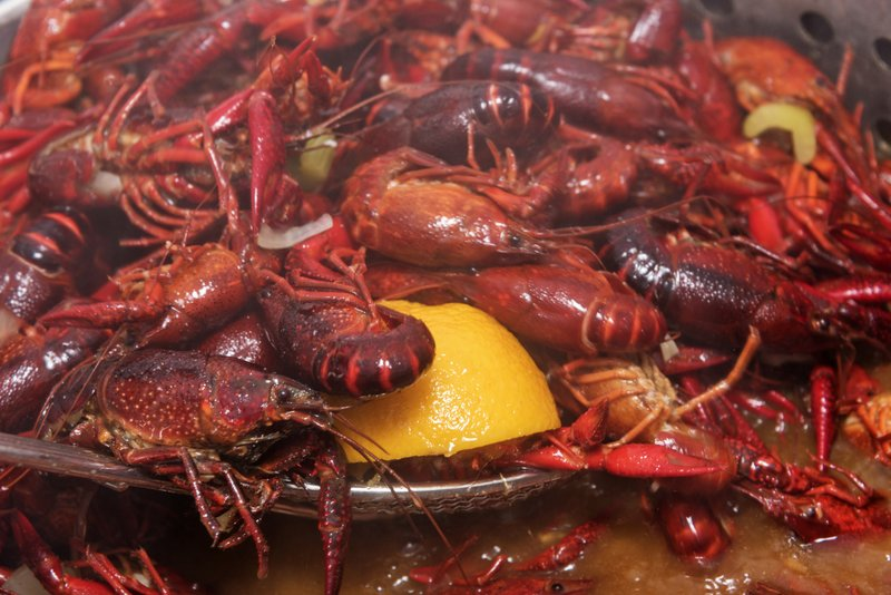Picture of a pot full of cooking Lousiana Crawfish