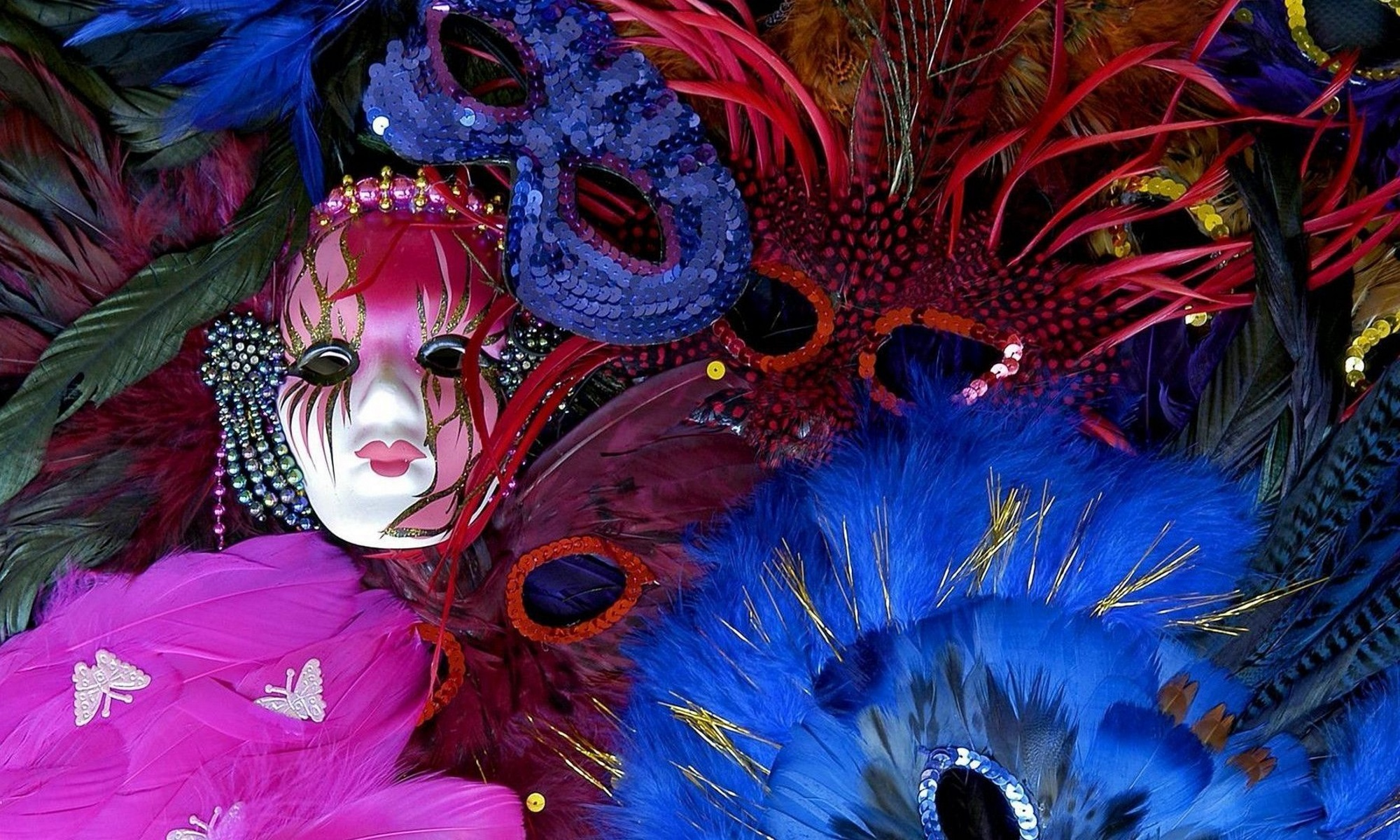 Picture of Masks and Feathers